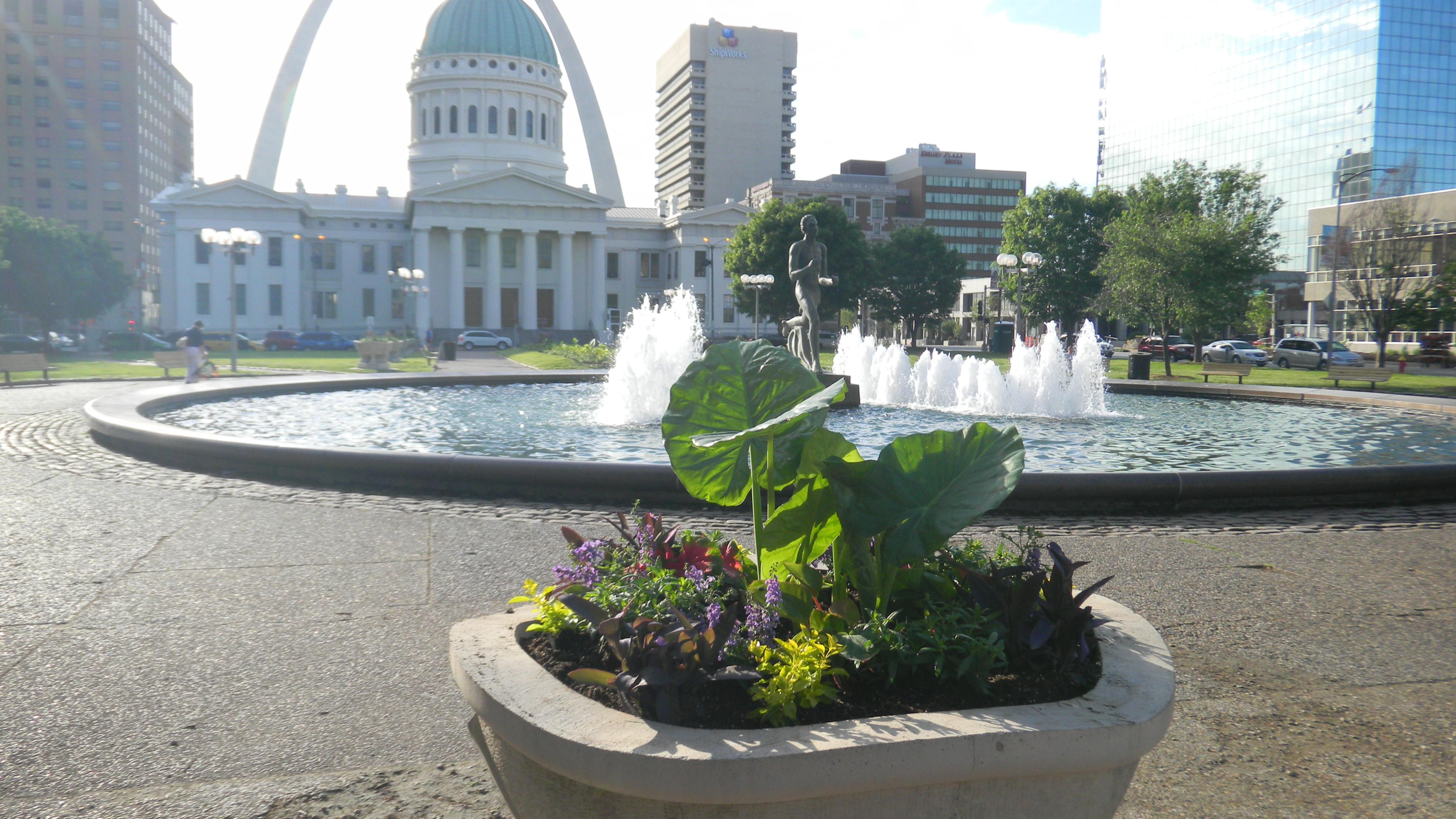 Kiener Plaza Summer